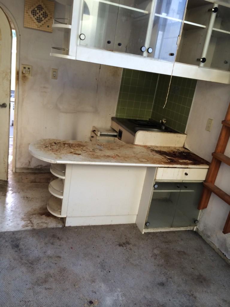 某分譲マンションの特殊清掃(消臭・消毒・リフォーム)|さいたま市大宮区のお客様