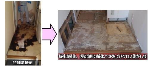 2013.8.31(土曜日)特殊清掃、江東区