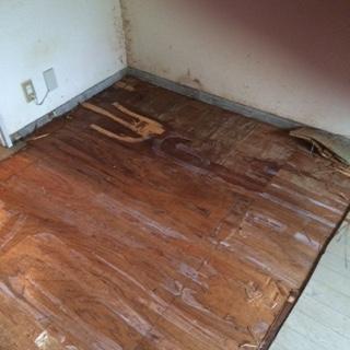 某賃貸マンションの特殊清掃(消臭・消毒・原状回復)|埼玉県戸田市のお客様